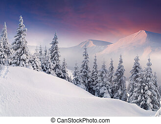 Colorful winter landscape in the mountains. Sunrise