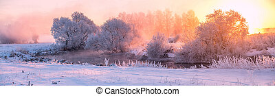 Colorful winter morning