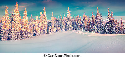 Colorful winter panorama of snowy mountains.