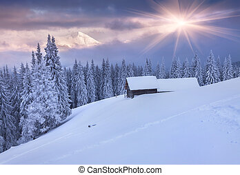 Colorful winter sunrise in mountains. Dramatic sky.