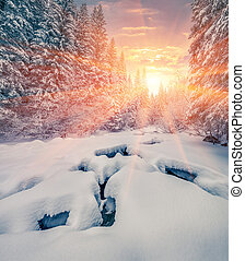 Colorful winter sunrise in the mountain forest with dark water river