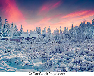 Colorful winter sunrise in the mountain village. Instagram...