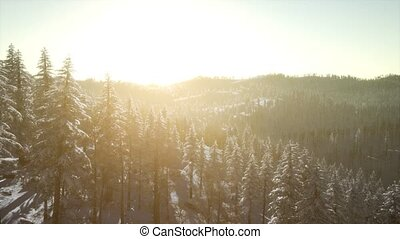 Colorful Winter Sunrise in the Mountains - colorful winter...