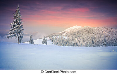 Colorful winter sunrise in the mountains