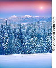 Colorful winter sunrise in the Carpathian mountains. Lisniv...