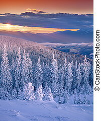Colorful winter sunset in mountains.