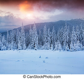 Colorful winter sunset in the mountains