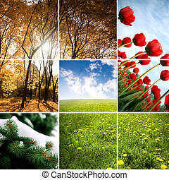 colori, di, stagione