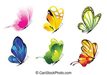 colorido, butterlies
