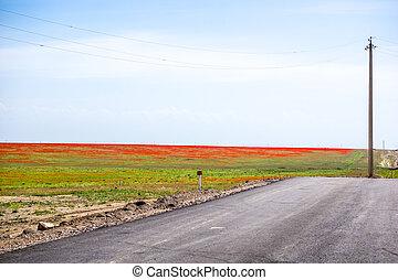 colorido, campo, paisaje