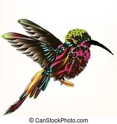 colorido, colibrí, mosca, y, tenencia, feather.eps