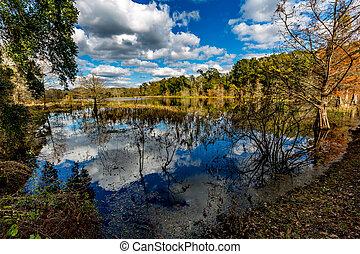 colorido, creekfield, lago, en, brazos, curva, tejas