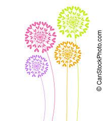 colorido, diente de león, flores