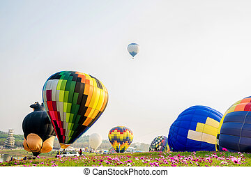 colorido, encima, vuelo, ocaso,  cosmos, flores, Globos, de aire caliente