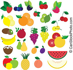 colorido, fruits, y, bayas, vector