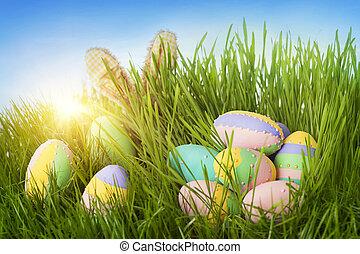 colorido, huevos de pascua, y, conejo