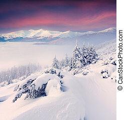 colorido, invierno, salida del sol, en las montañas