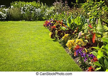 colorido, jardín, flores