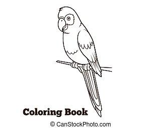colorido, loro, ilustración, caricatura, vector, libro