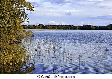 colorido, ocaso, en, lago