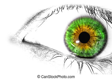 colorido, ojo humano, macro, primer plano, textura, blanco, plano de fondo