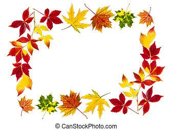 colorido, otoño sale, edificio, un, marco