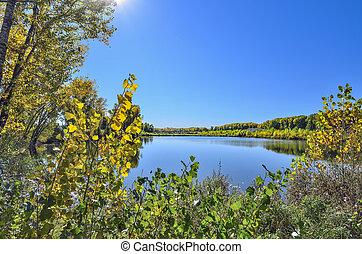 colorido, paisaje de otoño, en, el, lago, -, belleza, de, otoñal, naturaleza
