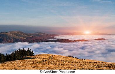 colorido, paisaje de otoño, en, el, montañas., salida del sol, debajo, el, nubes