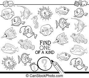 colorido, pez, juego, uno, clase, libro