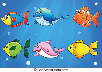 colorido, seis, mar, debajo, peces, sonriente