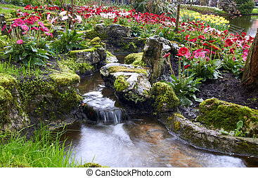 colorido, tulipanes, flores, en, keukenhof, holanda