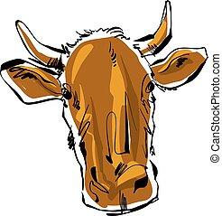 colorido, vaca, ilustração, mão, vetorial, desenhado, cow.