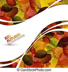 colorido, vector, otoño, plano de fondo