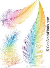 colorido, vector, pluma