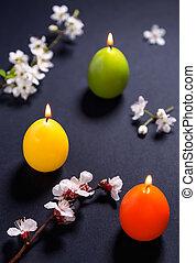 colorido, velas, forma, padrão, flores, ovo páscoa