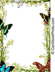 colorido, verano, marco, con, mariposas