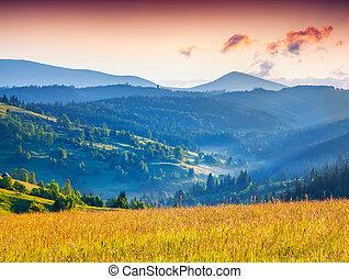 colorido, verano, salida del sol, en las montañas
