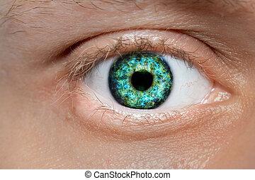 colorido, verde, ojo humano, macro