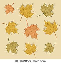 coloridos, abstratos, fundo, vector., leaves., outono