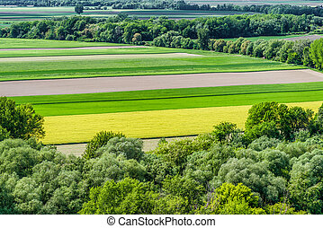 coloridos, agricultura, campos