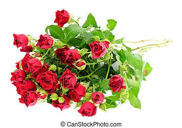 coloridos, buquet, isolado, experiência., flores brancas