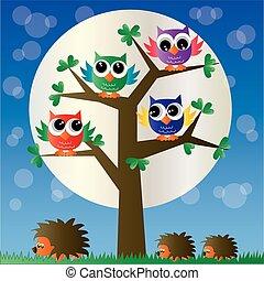 coloridos, corujas, em, um, árvore