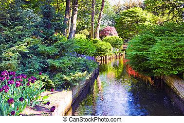 coloridos, florescer, tulips, em, keukenhof, parque, em, a, holanda