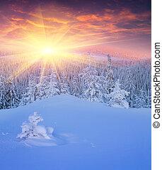 coloridos, inverno, amanhecer, em, montanhas.