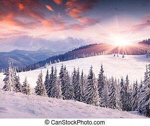 coloridos, inverno, amanhecer, montanhas