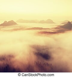 coloridos, isty, morning., paisagem, dentro, alvorada, após, chuvoso, nightl, filtrado, image:, processado, vindima, effect.