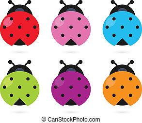 coloridos, ladybug, cute, isolado, jogo, branca