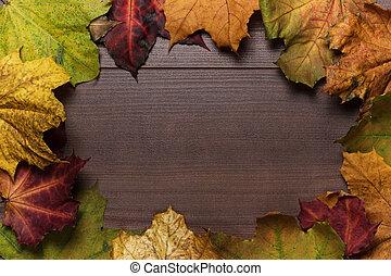 coloridos, madeira, folhas, outono, fundo, quadro