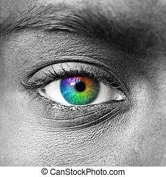 coloridos, olho, macro, tiro