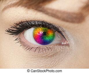 coloridos, olho mulher, close-up